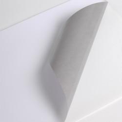 V300WS1 - VM100µm Blanc SM