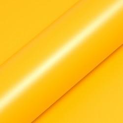 Translucide Bouton d'or