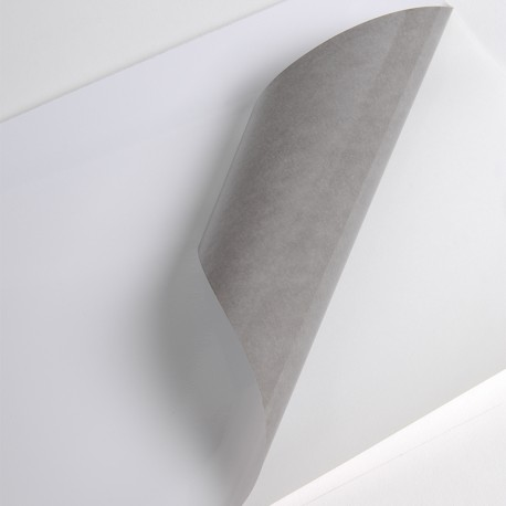 Bobine Jet encre VM100µm Blanc BT adh gris perm