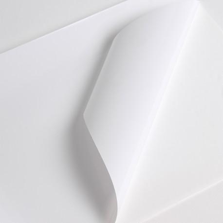 Bobine Jet encre  VM 80µm Blanc BT adh inc  perm